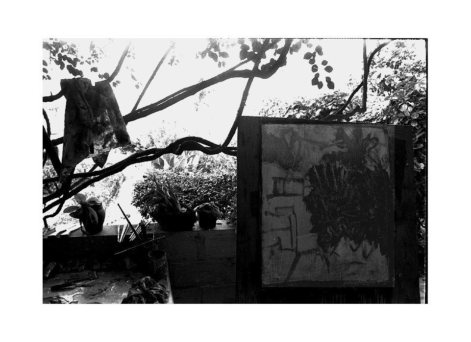 griswold-garden